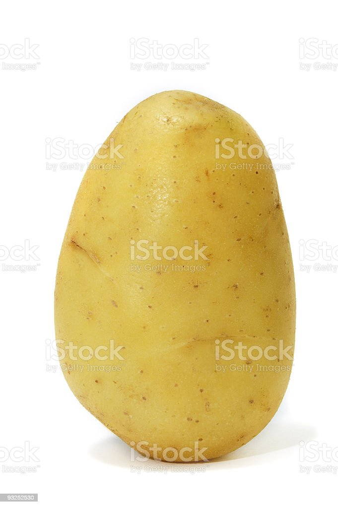Single Yukon gold potato on a white background stock photo