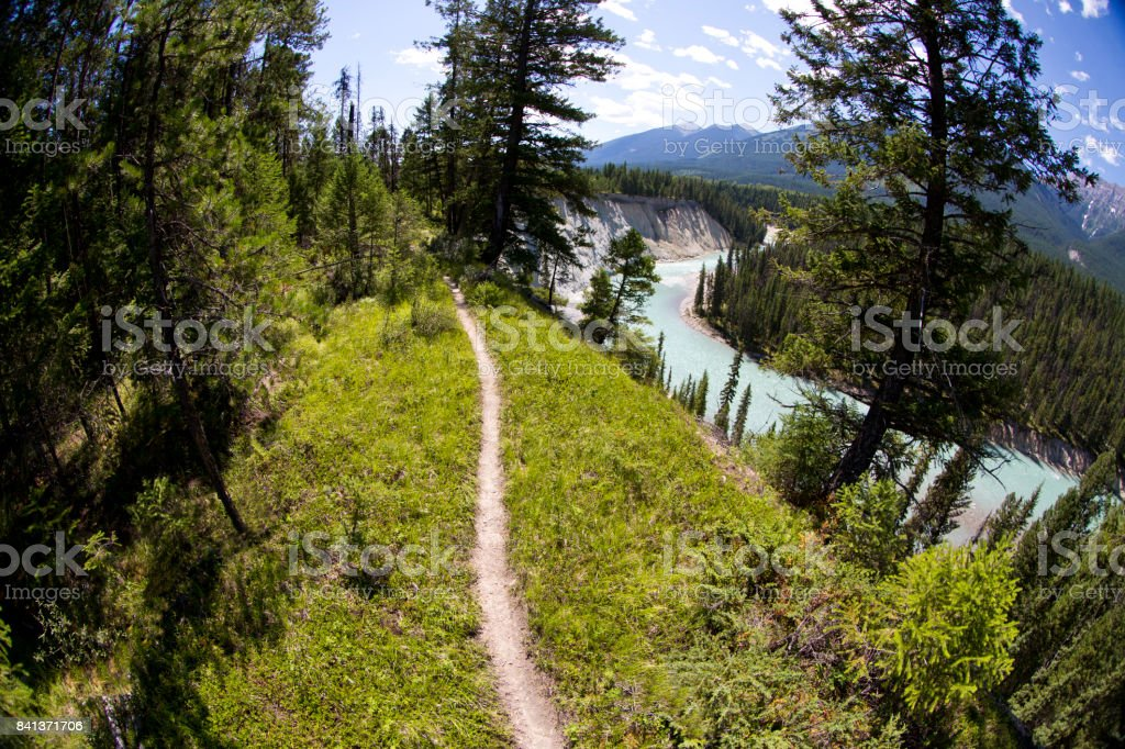 A singletrack trail for mountain biking, hiking and running in British Columbia, Canada. stock photo