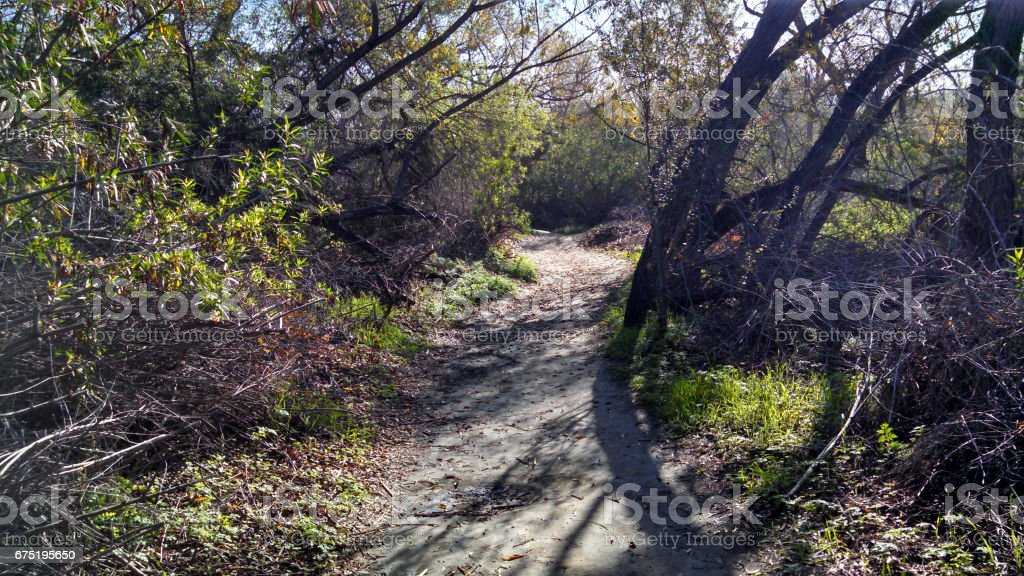 A Sinister-Looking Trail in Orange County stock photo