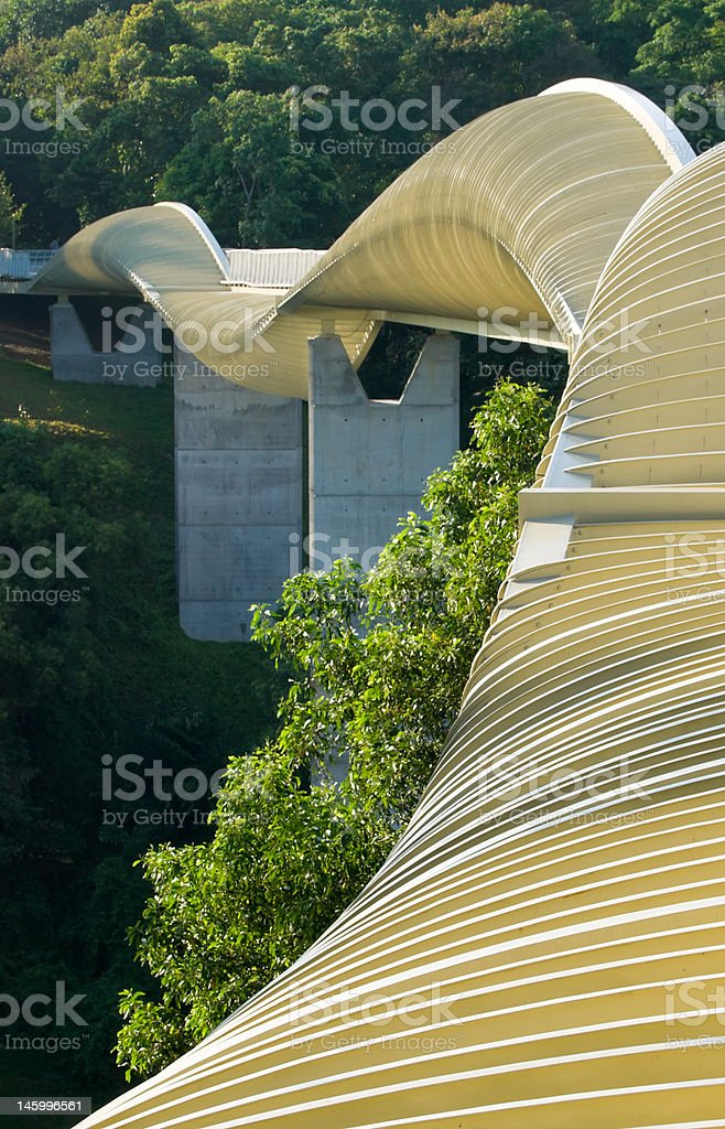 Sinuous Curves royalty-free stock photo