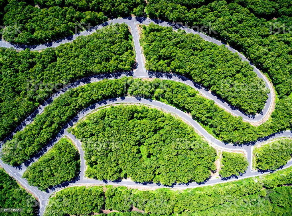 Sinuous track in forest aerial stock photo