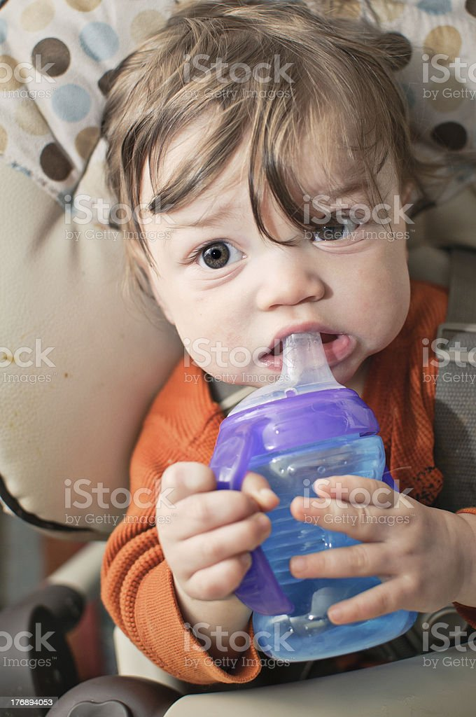 Sippy Bottle stock photo