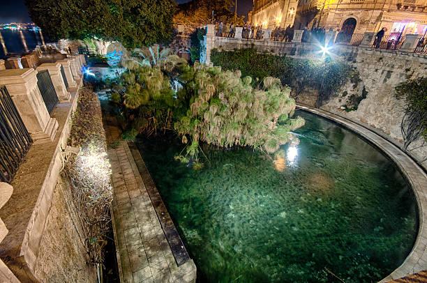 siracusa, fonte aretusa gesehen, bei nacht (arethusa's fountain). hdr. - ortygia stock-fotos und bilder