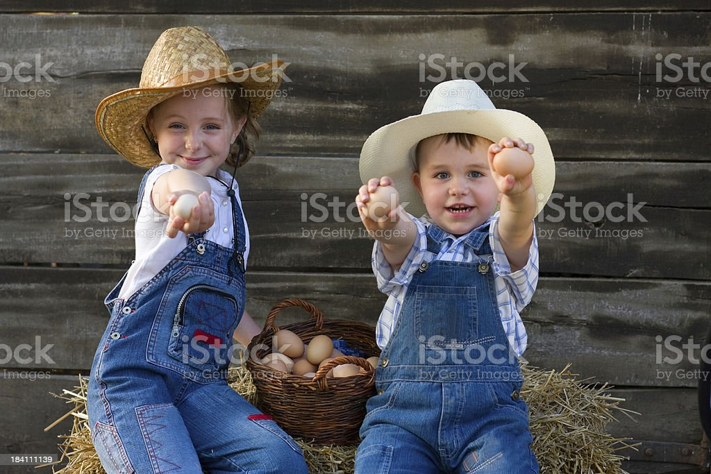 Sister and brother collecting eggs at farm. royalty-free stock photo