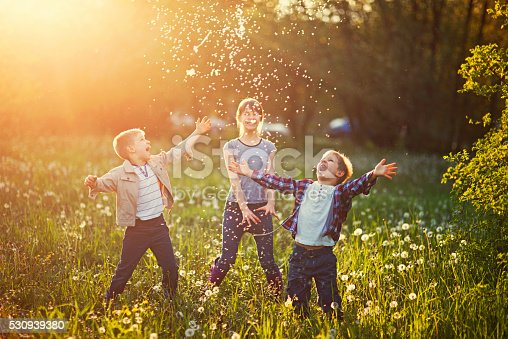 istock Sister and brothers playing in dandelion field 530939380