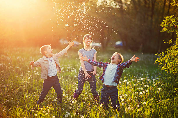 bracia i siostry gra w polu mniszek lekarski - pyłek zdjęcia i obrazy z banku zdjęć