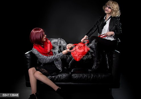 istock Sisters Fighting Over a Bag 534113648