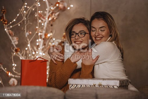 Two beautiful young women are hugging after exchanging gifts near the modern Christmas tree.