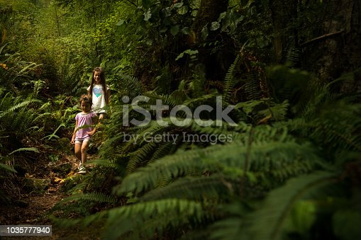 Children playing with leaves in a lush green coastal forest