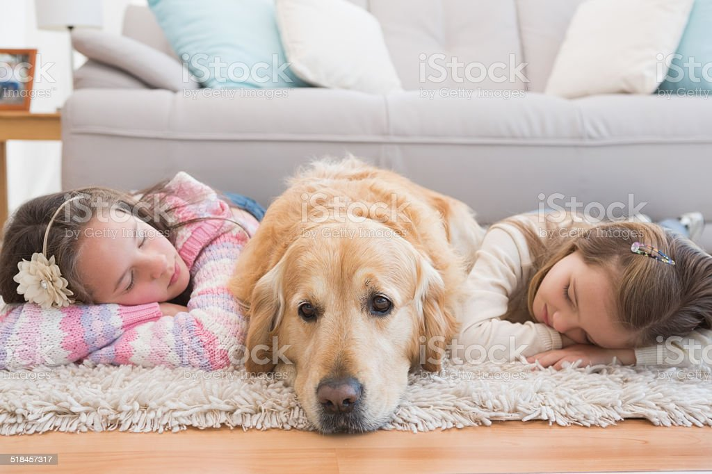 Sisters napping on rug with golden retriever stock photo