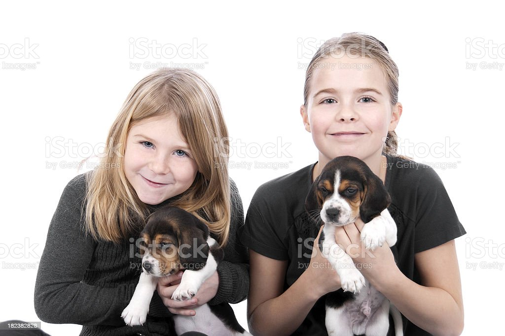 Sisters With Beagle Pups On A White Background royalty-free stock photo