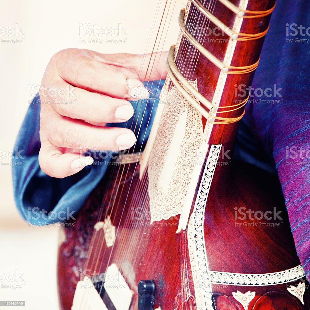 Sitar Musician stock photo