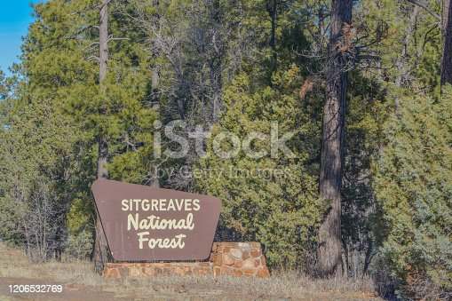 Sitgreaves National Forest Sign in the mountains of Arizona USA
