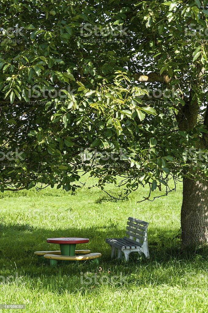 Sitting in the shade of a large tree stock photo