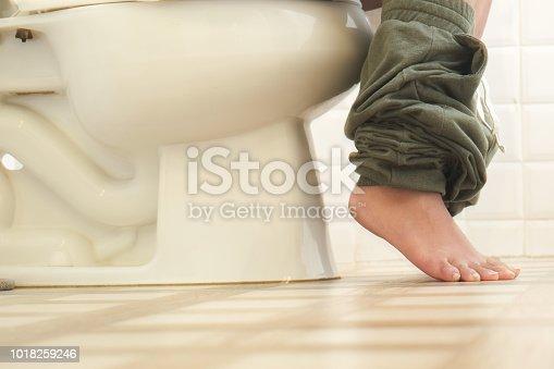 1045838148 istock photo Sitting on a toilet bowl 1018259246