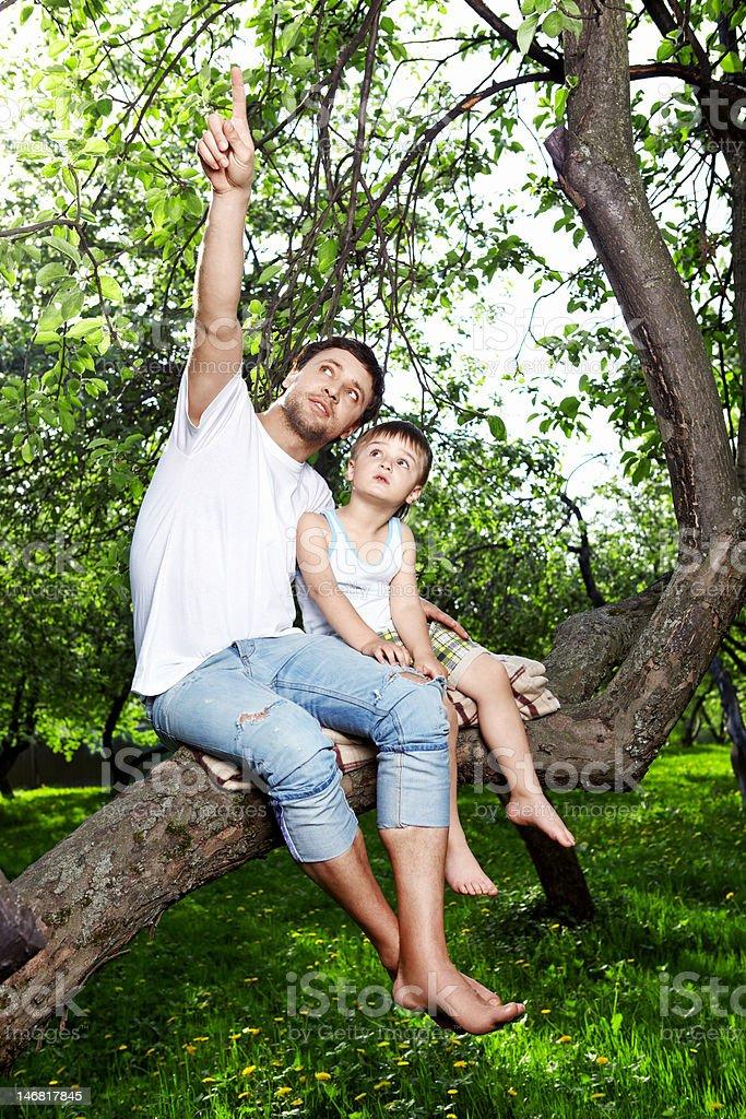 Sitting on a tree stock photo