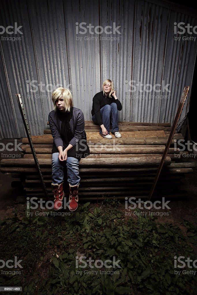 Seduto su Log foto stock royalty-free