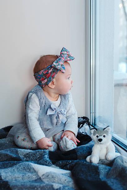sitting on the window - hunde strumpfhosen stock-fotos und bilder