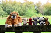 six dolls on old wall  ,dolls friends,one doll feeling lonely