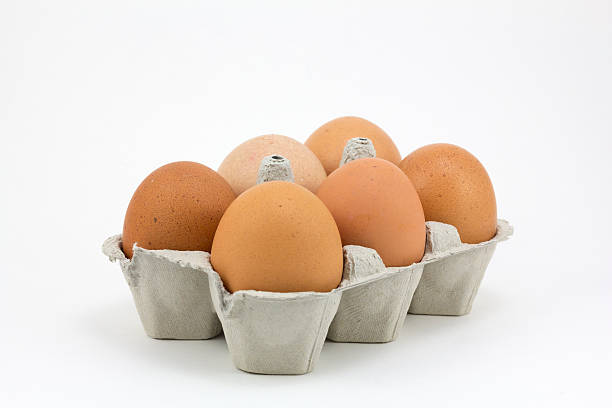 six eggs - chicken bird in box stockfoto's en -beelden