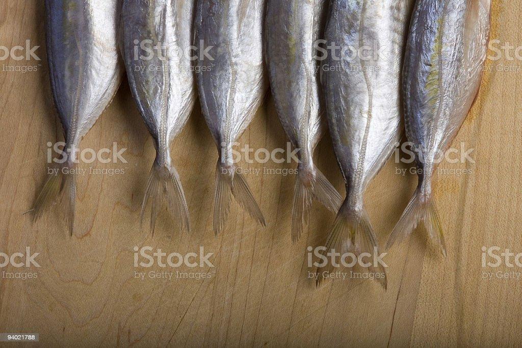Six Fins royalty-free stock photo