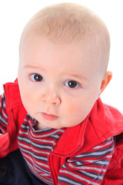 Six Month Baby - Boy Portrait stock photo