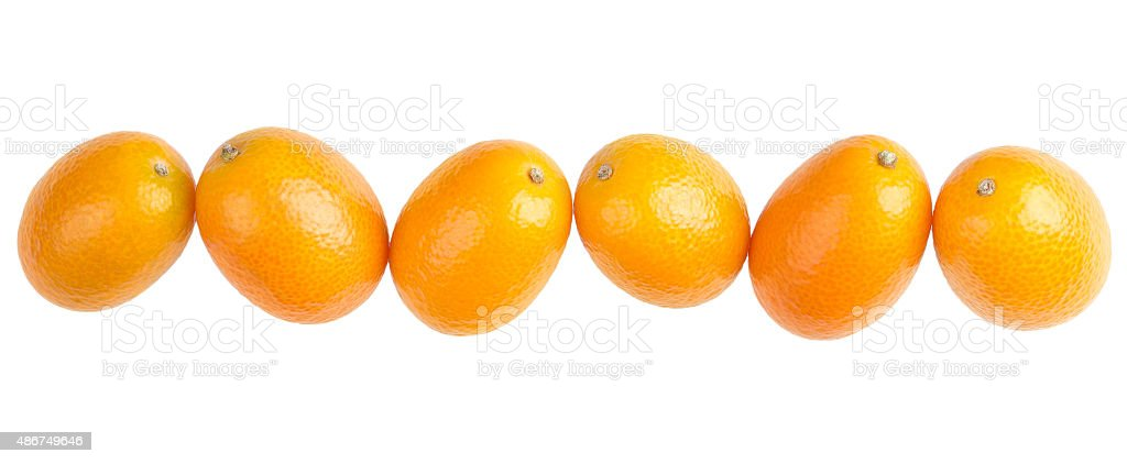 Six Oval Kumquats In A Row On White Background stock photo