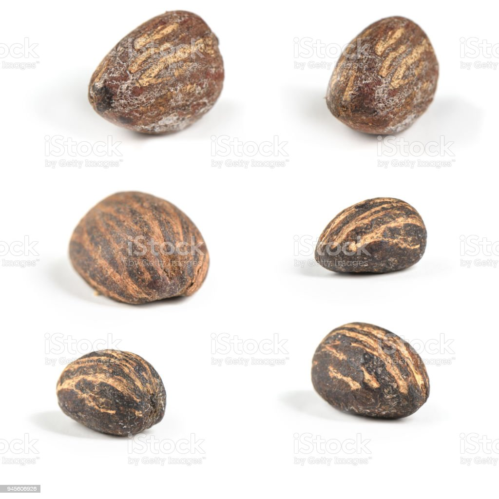 Six shea butter nuts on white - foto stock