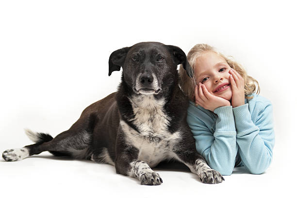 Six-year-old girl and her pet dog stock photo