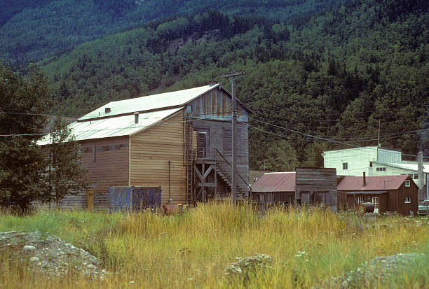 Skagway Sports Emporium, old building in Alaska Building in Skagway, Alaska, amidst wild grasses in the foreground and heavily forested mountains in the background; circa 1979 hearkencreative stock pictures, royalty-free photos & images