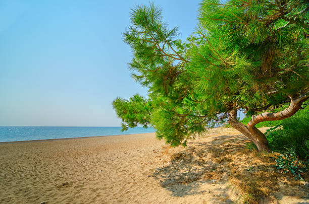 Skala beach , Kefalonia-Greece. stock photo