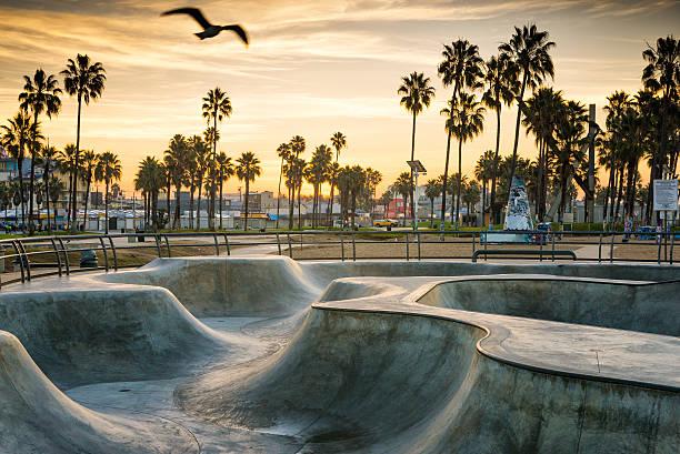 skate park - venice beach in kalifornien stock-fotos und bilder