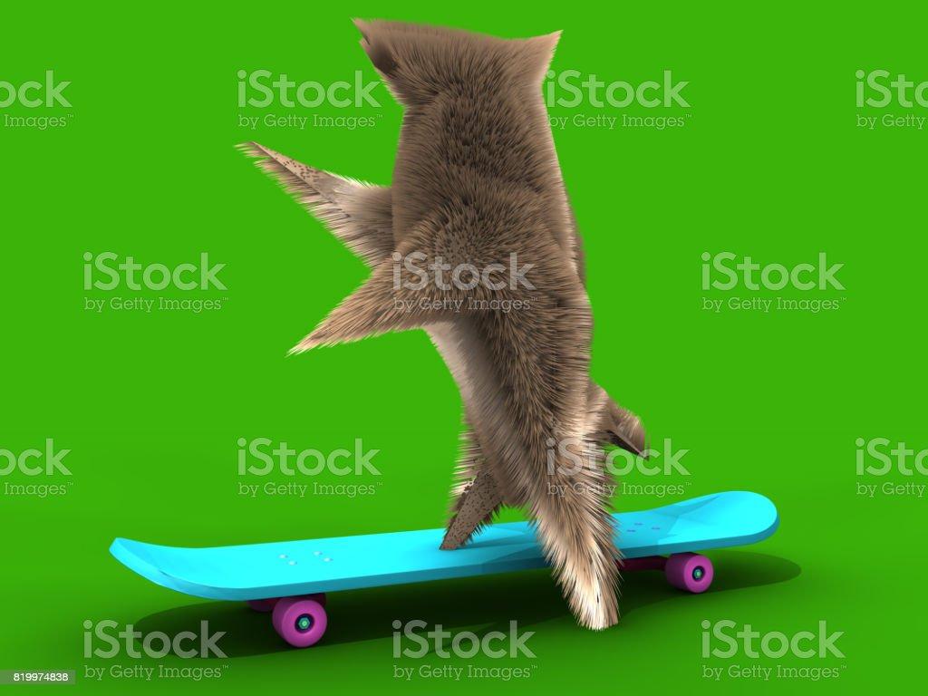 Skateboarding Squirrel stock photo