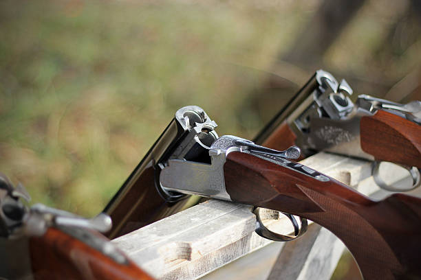 Skeet shooting, closeup of several shotguns in line stock photo