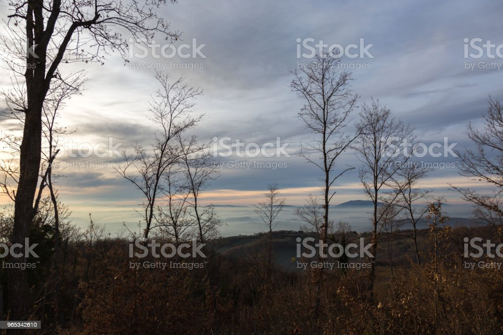 Skeletal, winter trees in the foreground, and a valley filled by zbiór zdjęć royalty-free