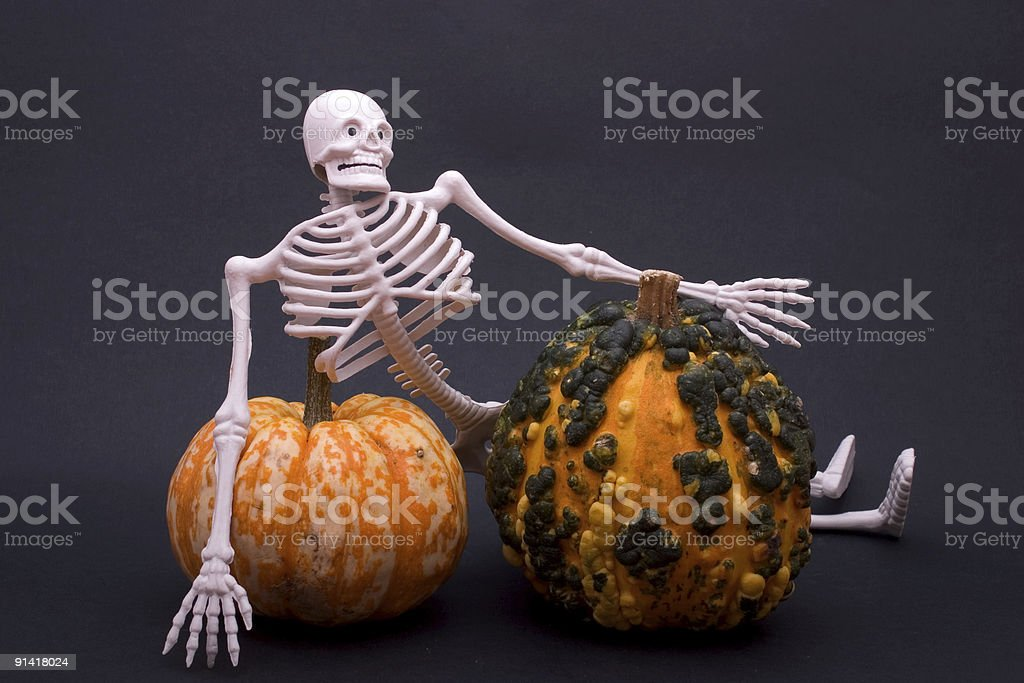 Skeleton and gourds royalty-free stock photo