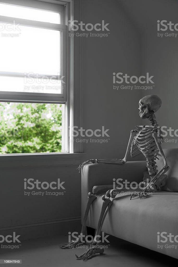 skeleton at a window royalty-free stock photo