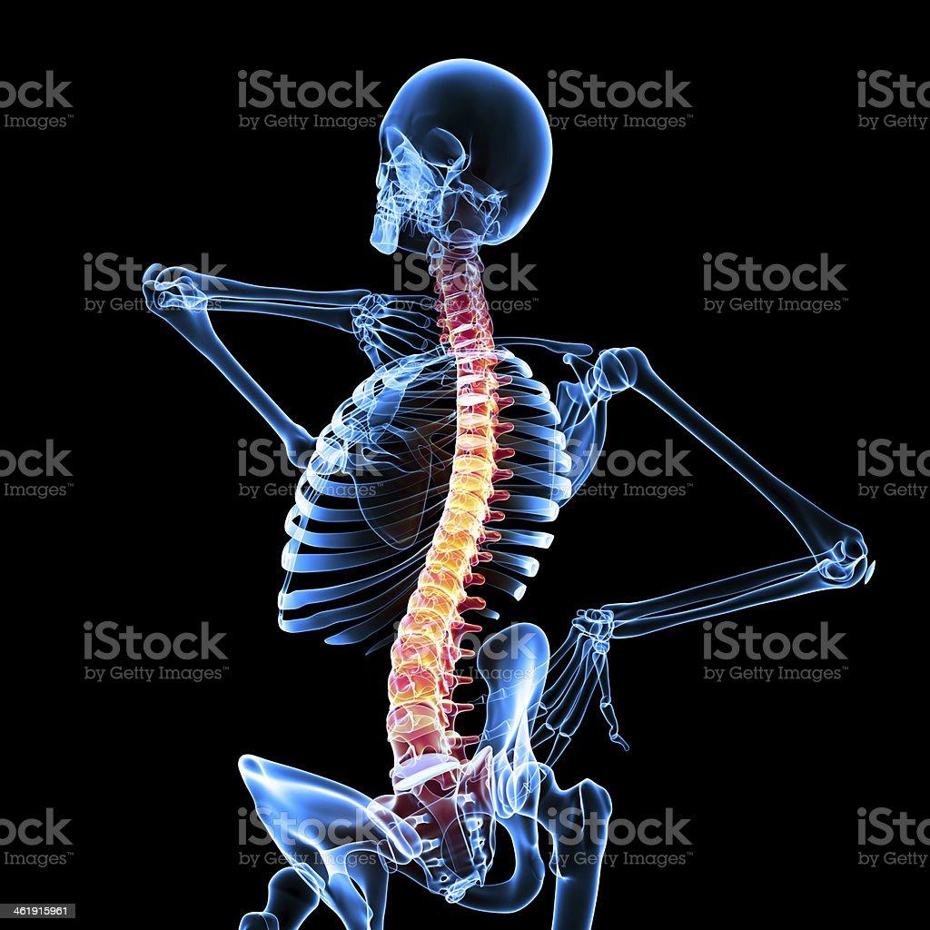 Skeleton Back Pain Anatomy In Black stock photo 461915961 | iStock