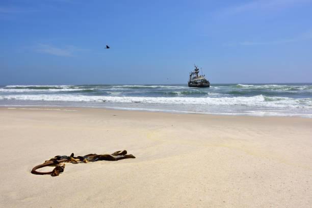 skeleton coast, namibia - rettungsinsel stock-fotos und bilder