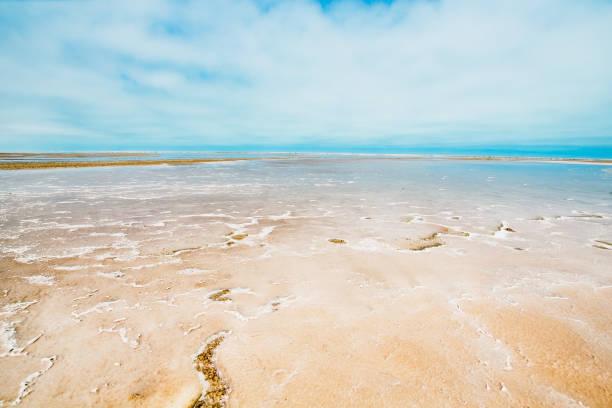 Skeleton Coast – Foto
