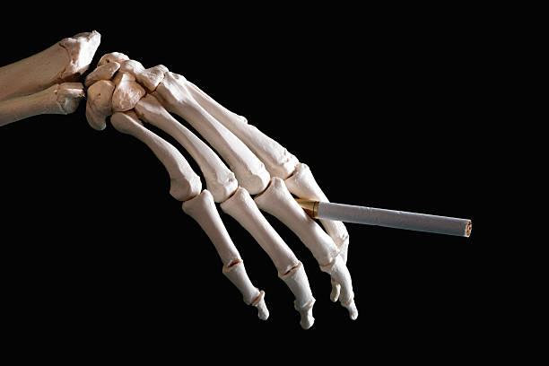 Royalty free human skeleton human hand smoking smoking issues skeleton hand holding cigarette stock photo ccuart Images