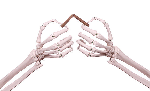 Royalty free human skeleton human hand cigarette smoking pictures skeleton hands with broken cigar stock photo ccuart Choice Image