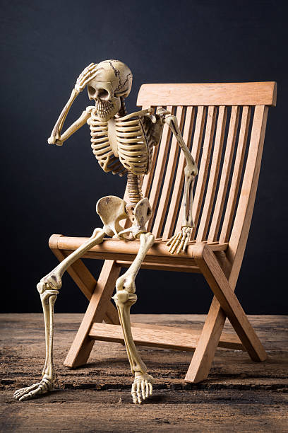 Best Photography Human Skeleton Sitting Chair Stock Photos