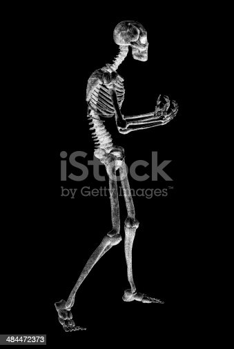 istock skeleton illustration 484472373