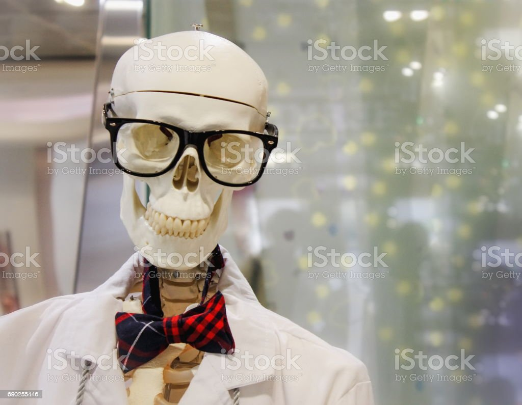 Skeleton in a Shop Window stock photo