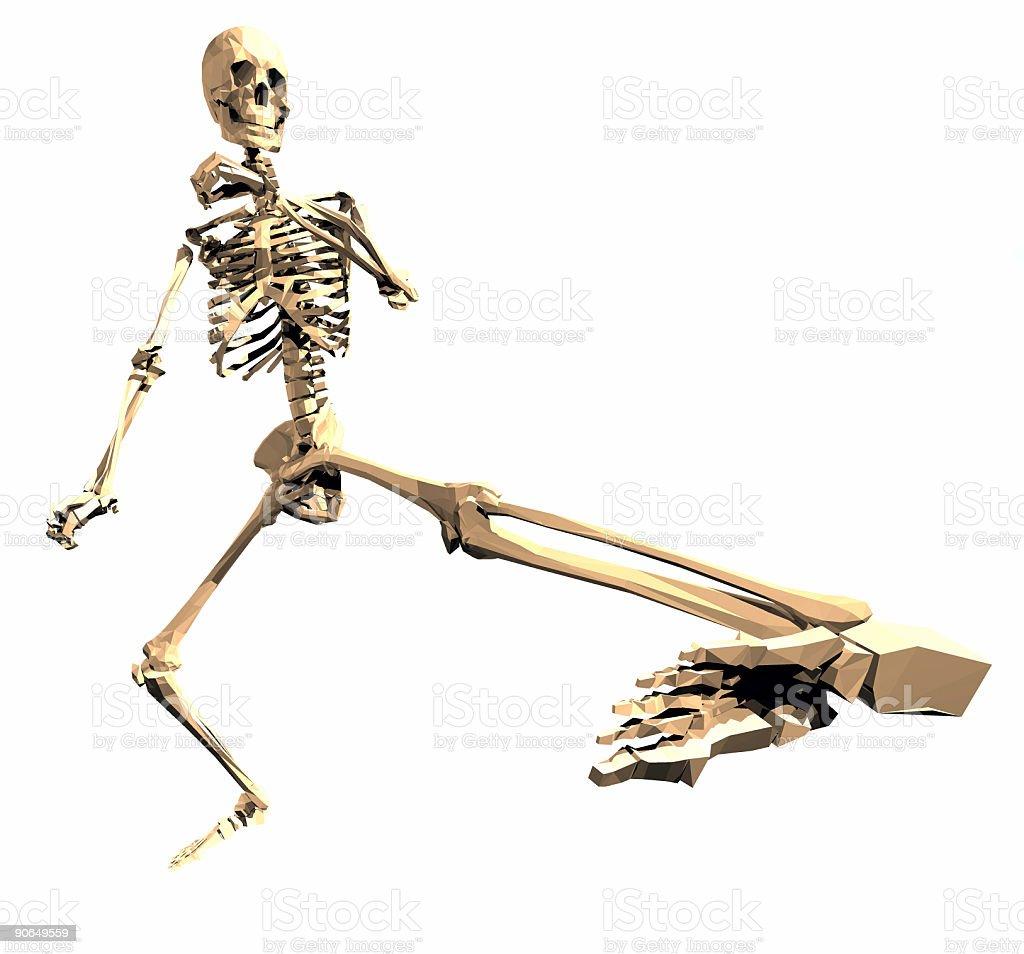 Fotografía de Esqueleto Viendo Lente De Ojo De Pez3 y más banco de ...