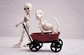 Skeleton kid and dog playing time