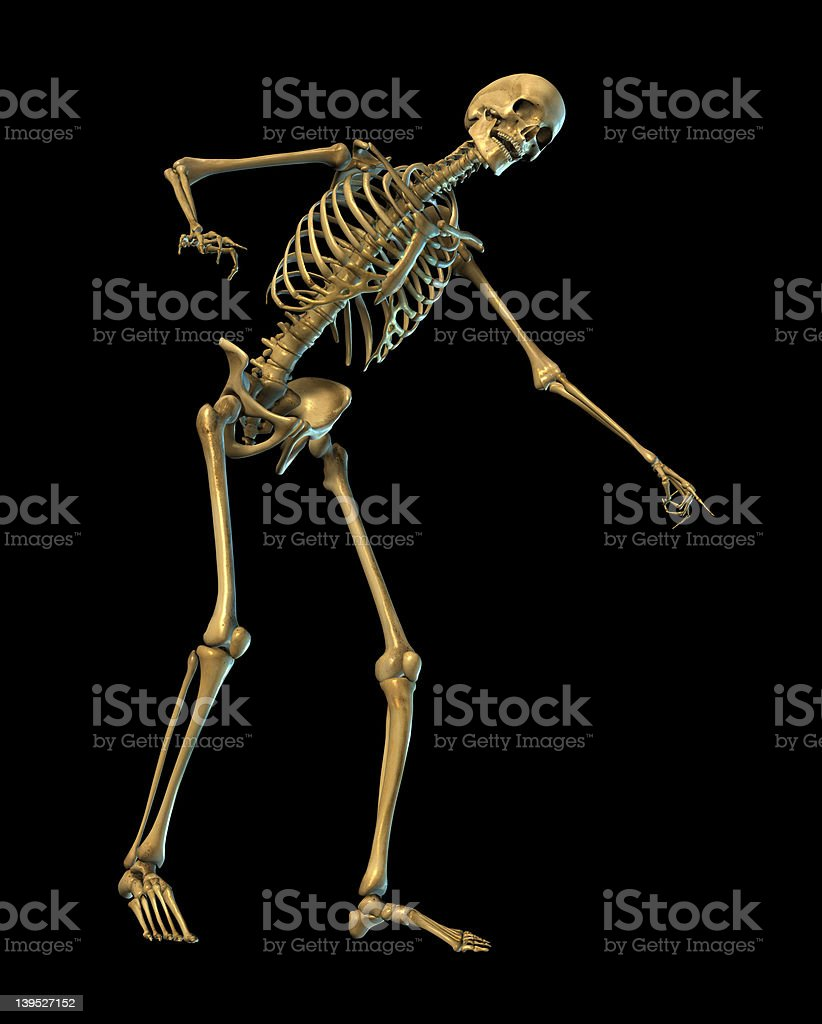 Skeleton Laughing and Pointing - on black with clipping path royalty-free stock photo