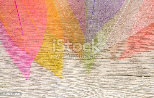 istock Skeleton leafs background. On a wooden background 1086962334