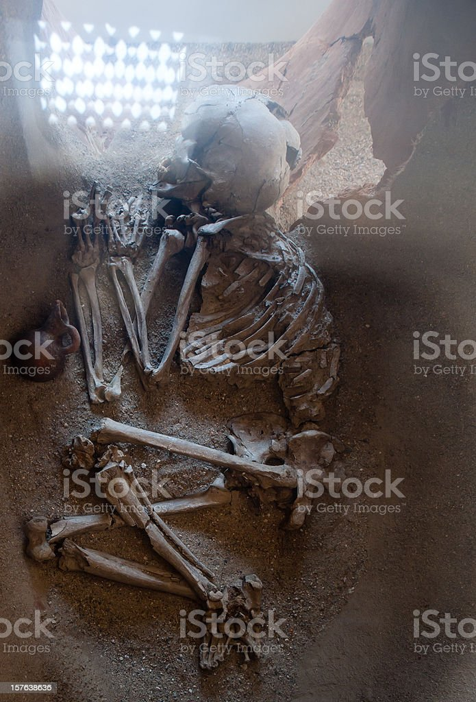 skeleton looking from antiquity stock photo